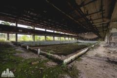 deadinside, urbex, dead inside, natalia sobanska, abandoned, abandoned, abandoned swimming pool, abkhazia-6741