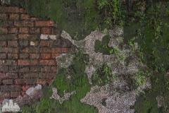 deadinside, urbex, dead inside, natalia sobanska, abandoned, abandoned, abandoned swimming pool, abkhazia-6752