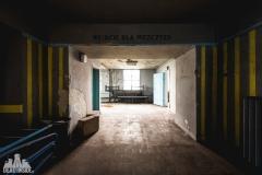 deadinside, urbex, dead inside, natalia sobanska, abandoned, abandoned swimming pool, synagouge, opuszczona synagoga, Poland (5 of 5)