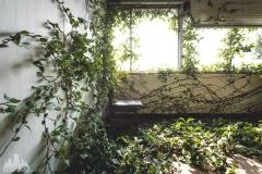deadinside-urbex-dead-inside-natalia-sobanska-abandoned-abandoned-office-building-Ikeshima-island-Japan-Haikyo-39-of-60