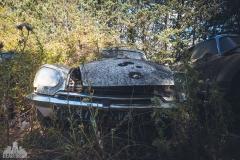deadinside-urbex-dead-inside-natalia-sobanska-abandoned-car-graveyard-citroen-DS-France-1-of-45
