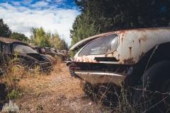 deadinside-urbex-dead-inside-natalia-sobanska-abandoned-car-graveyard-citroen-DS-France-13-of-45