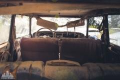 deadinside-urbex-dead-inside-natalia-sobanska-abandoned-car-graveyard-citroen-DS-France-15-of-45
