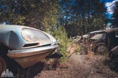 deadinside-urbex-dead-inside-natalia-sobanska-abandoned-car-graveyard-citroen-DS-France-16-of-45