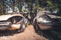 deadinside-urbex-dead-inside-natalia-sobanska-abandoned-car-graveyard-citroen-DS-France-18-of-45