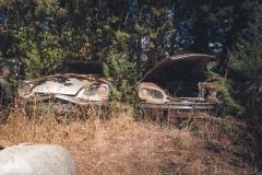 deadinside-urbex-dead-inside-natalia-sobanska-abandoned-car-graveyard-citroen-DS-France-20-of-45
