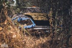 deadinside-urbex-dead-inside-natalia-sobanska-abandoned-car-graveyard-citroen-DS-France-23-of-45