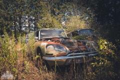 deadinside-urbex-dead-inside-natalia-sobanska-abandoned-car-graveyard-citroen-DS-France-24-of-45