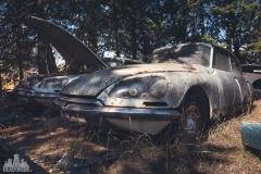deadinside-urbex-dead-inside-natalia-sobanska-abandoned-car-graveyard-citroen-DS-France-27-of-45