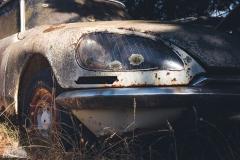 deadinside-urbex-dead-inside-natalia-sobanska-abandoned-car-graveyard-citroen-DS-France-28-of-45