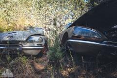 deadinside-urbex-dead-inside-natalia-sobanska-abandoned-car-graveyard-citroen-DS-France-3-of-45