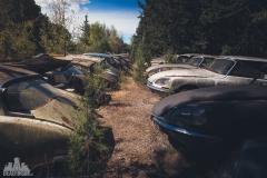 deadinside-urbex-dead-inside-natalia-sobanska-abandoned-car-graveyard-citroen-DS-France-31-of-45