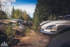 deadinside-urbex-dead-inside-natalia-sobanska-abandoned-car-graveyard-citroen-DS-France-32-of-45