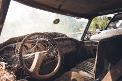 deadinside-urbex-dead-inside-natalia-sobanska-abandoned-car-graveyard-citroen-DS-France-33-of-45