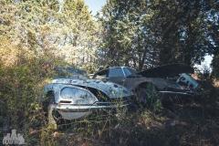 deadinside-urbex-dead-inside-natalia-sobanska-abandoned-car-graveyard-citroen-DS-France-36-of-45