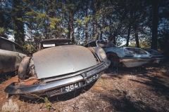 deadinside-urbex-dead-inside-natalia-sobanska-abandoned-car-graveyard-citroen-DS-France-39-of-45