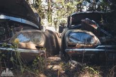 deadinside-urbex-dead-inside-natalia-sobanska-abandoned-car-graveyard-citroen-DS-France-4-of-45