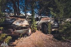 deadinside-urbex-dead-inside-natalia-sobanska-abandoned-car-graveyard-citroen-DS-France-42-of-45