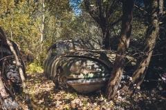 deadinside-urbex-dead-inside-natalia-sobanska-abandoned-car-graveyard-citroen-DS-France-44-of-45
