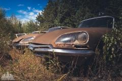 deadinside-urbex-dead-inside-natalia-sobanska-abandoned-car-graveyard-citroen-DS-France-5-of-45