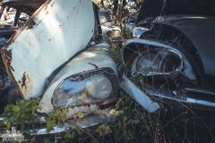 deadinside-urbex-dead-inside-natalia-sobanska-abandoned-car-graveyard-citroen-DS-France-6-of-45