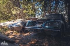 deadinside-urbex-dead-inside-natalia-sobanska-abandoned-car-graveyard-citroen-DS-France-9-of-45