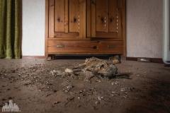 deadinside-urbex-dead-inside-natalia-sobanska-abandoned-abandoned-gesthaus-gasthof-Austria-21-of-23