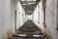 deadinside-urbex-dead-inside-natalia-sobanska-abandoned-palace-AbkhaziaGeorgia-1-of-20