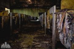 abandoned political school, Croatia, Tito, Joseph Fritz, opuszczona szkoła polityczna, Chorwacja, urbex, lost, moss-15